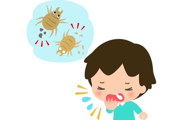 ダニアレルギーの男の子