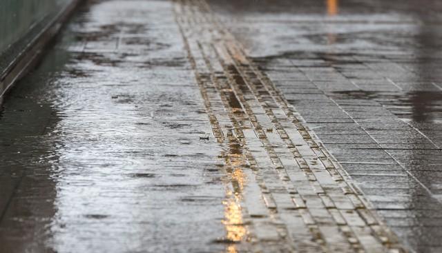 雨に濡れた歩道